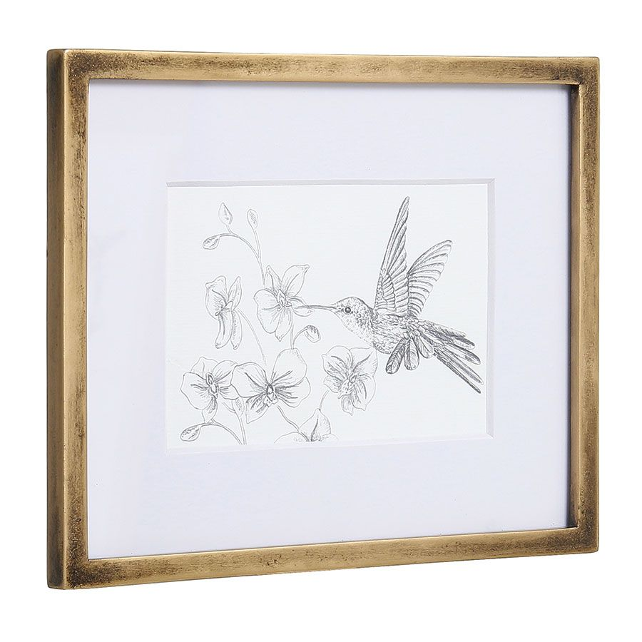 3 cadres oiseaux crayonnés