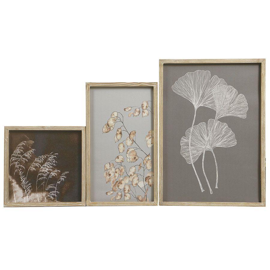 Triptyque de  gravures motif nature