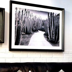 Tableau en bois photo cactus