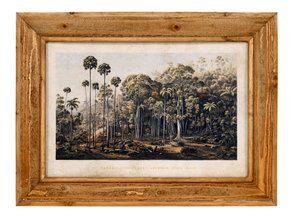 Tableau imprimé forêt