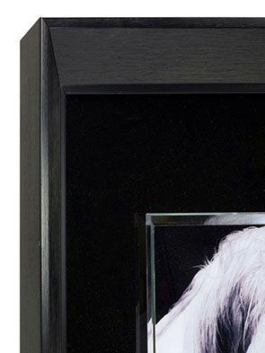 Tableau mural motif cheval en verre - Visuel n°3