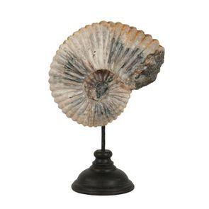 Statuette ammonite sur pied en bois