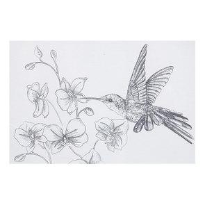 3 cadres oiseaux crayonnés - Visuel n°19