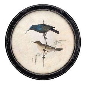 Tableau décoratif rond noir avec dessins d'oiseaux d35