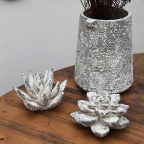 Plante succulente en céramique aspect ciment - Visuel n°3