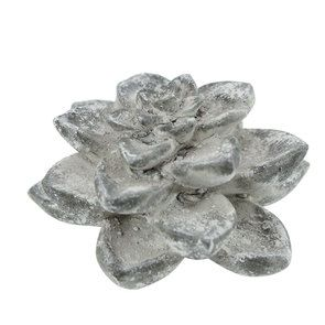 Plante succulente en céramique aspect ciment - Visuel n°5