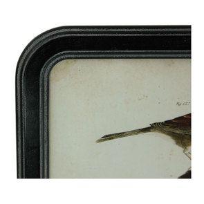 Tableau façon gravure motif oiseaux 50 cm x 35  cm
