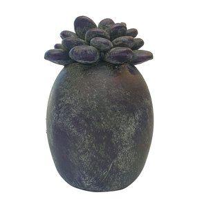 Statuette succulente violette
